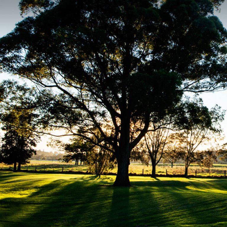 The Grange Golf Club