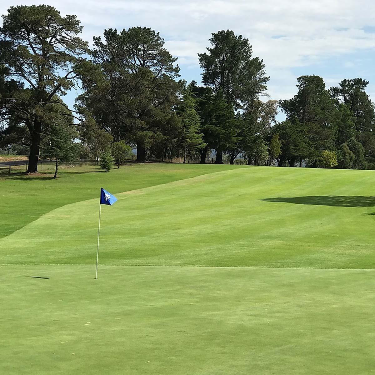 View of Armidale Golf Club