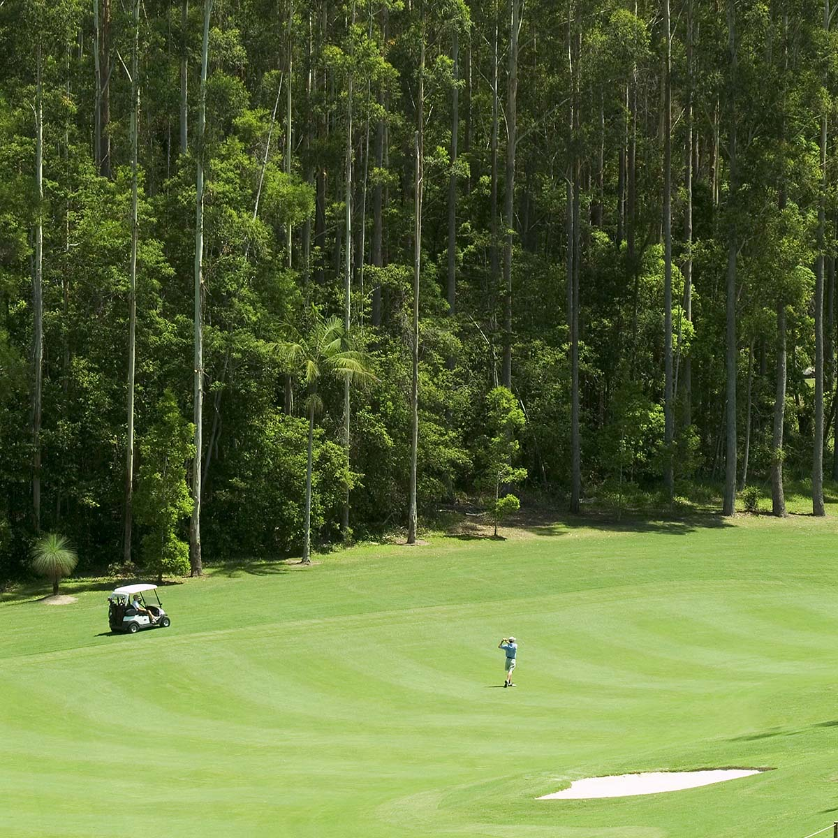 spectacular scenery around the beautiful Bonville Golf Resort
