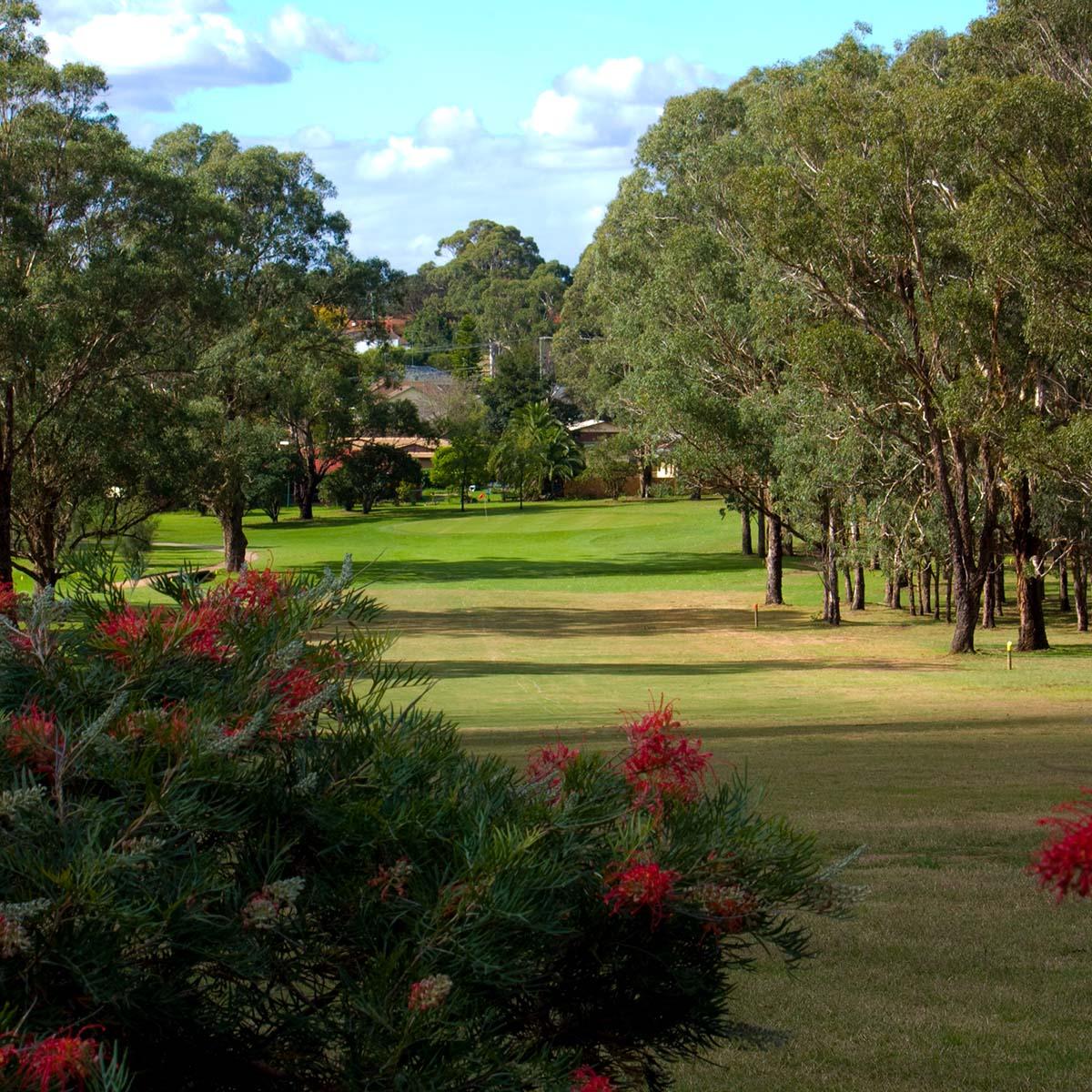 an afternoon look down a fairway at Camden Golf Club