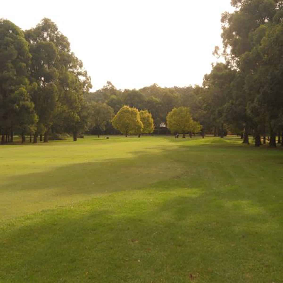Scenery of the golf course at Leonay Golf Club