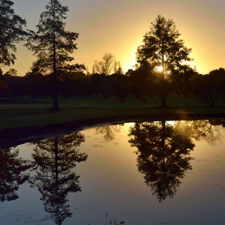 Nowra Golf Club DSC_0566