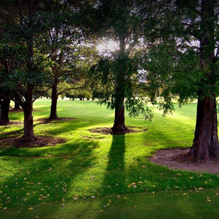 Nowra Golf Club DSC_0682