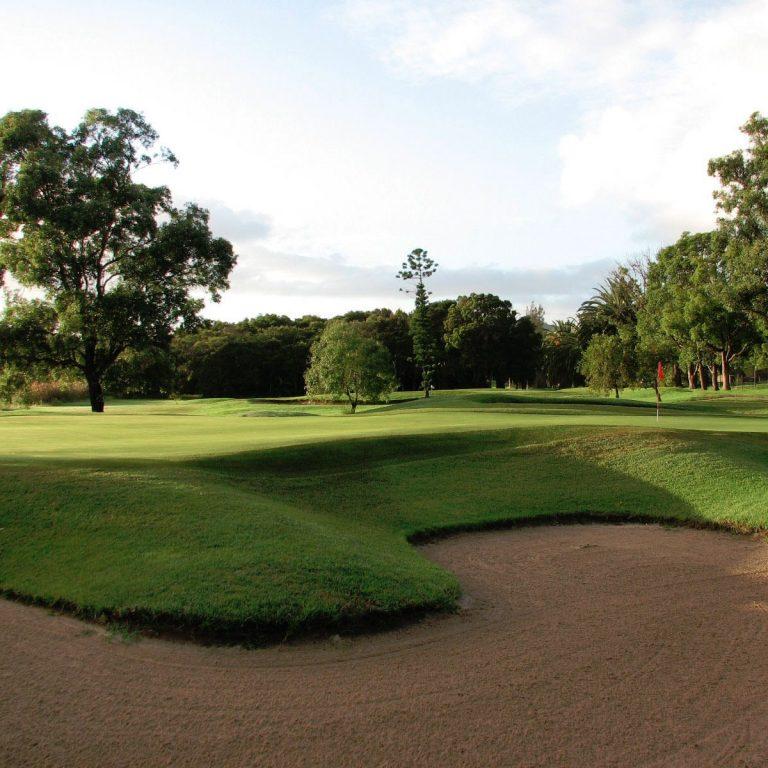 Waratah Golf Club8