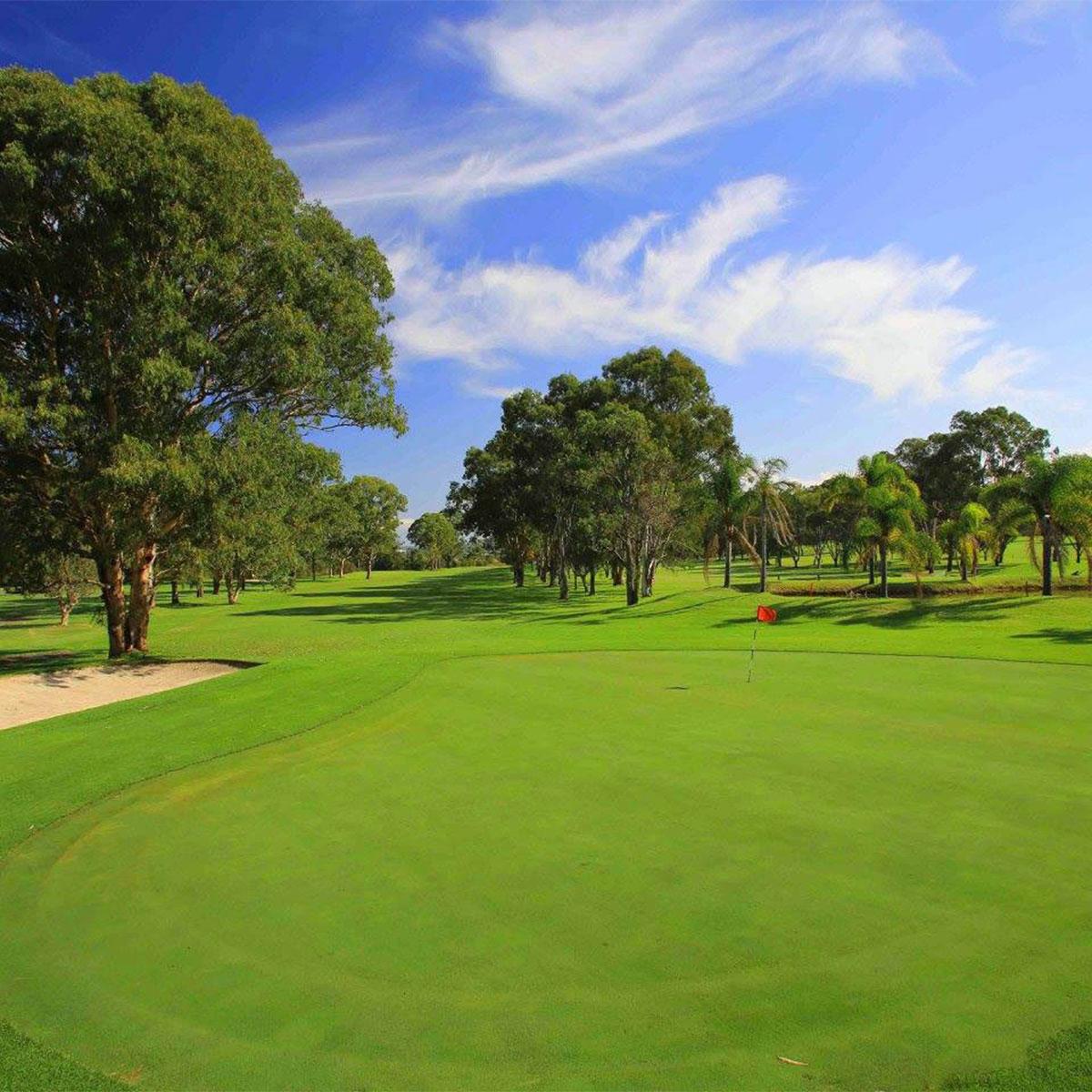 Wyong golf Club2