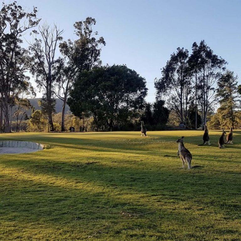 Bulahdelah Golf Club