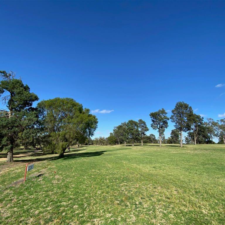 Coleambally Golf Club CWebb3