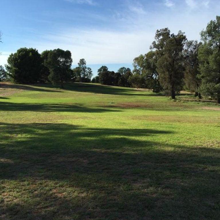 Coleambally Golf Club 2