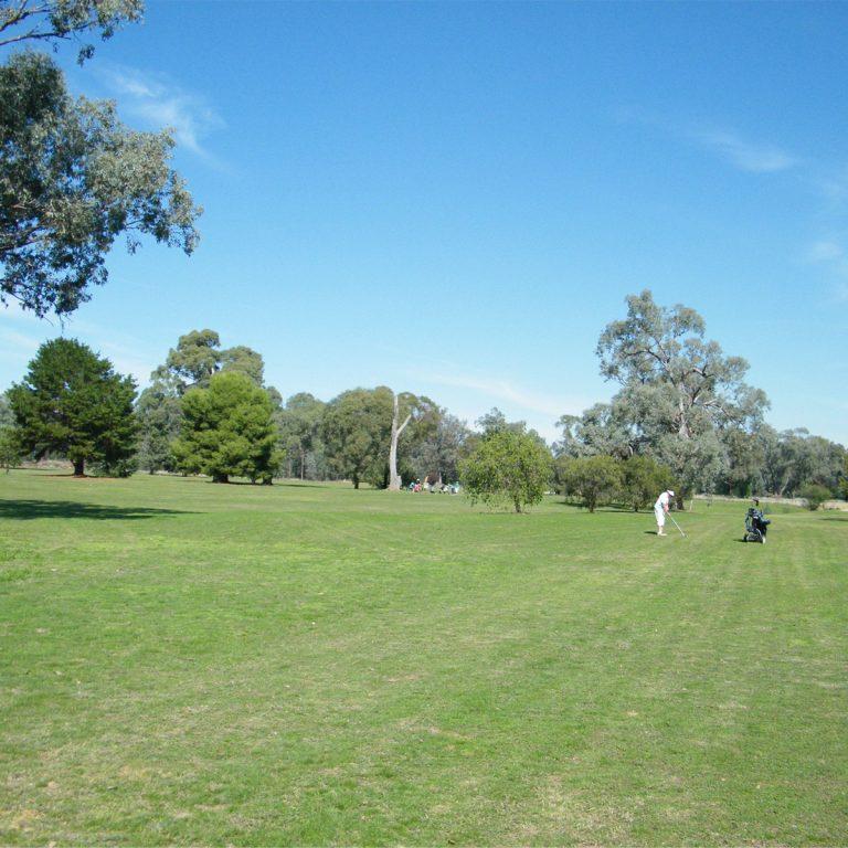 Golf course views at Culcairn Golf Club
