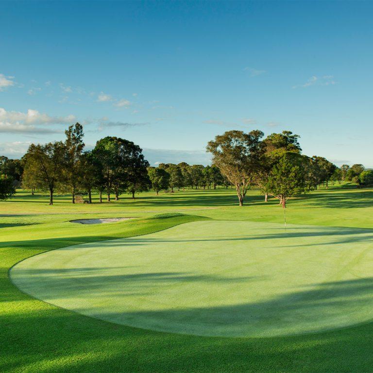 Wyong golf Club5