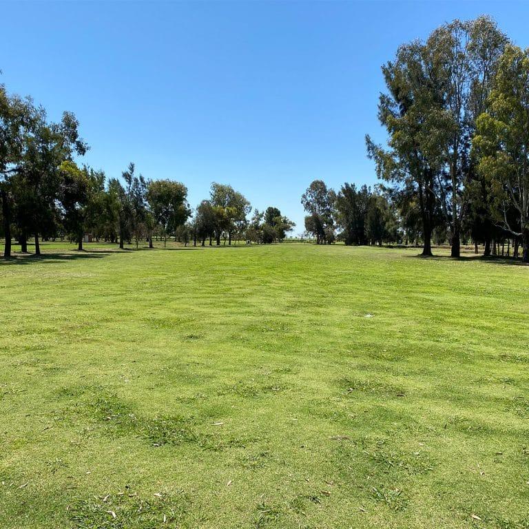 Yenda Golf Club CWebb2