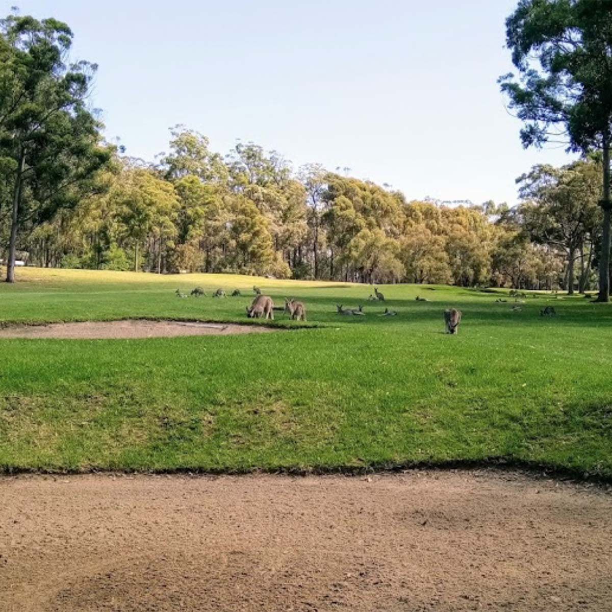 Course photo fo Eden Gardens Country Club