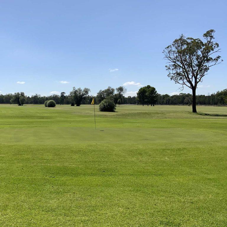 Gilgandra Golf Club 2