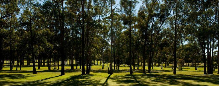 Fairfield Golf Club and Fairfield Ladies Golf Club