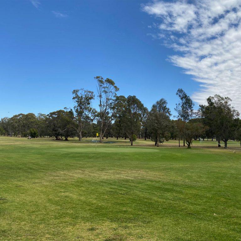 Finley Golf Club1