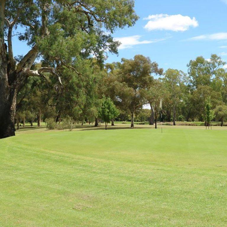 Scenery of the golf holes at Gundagai Golf Club