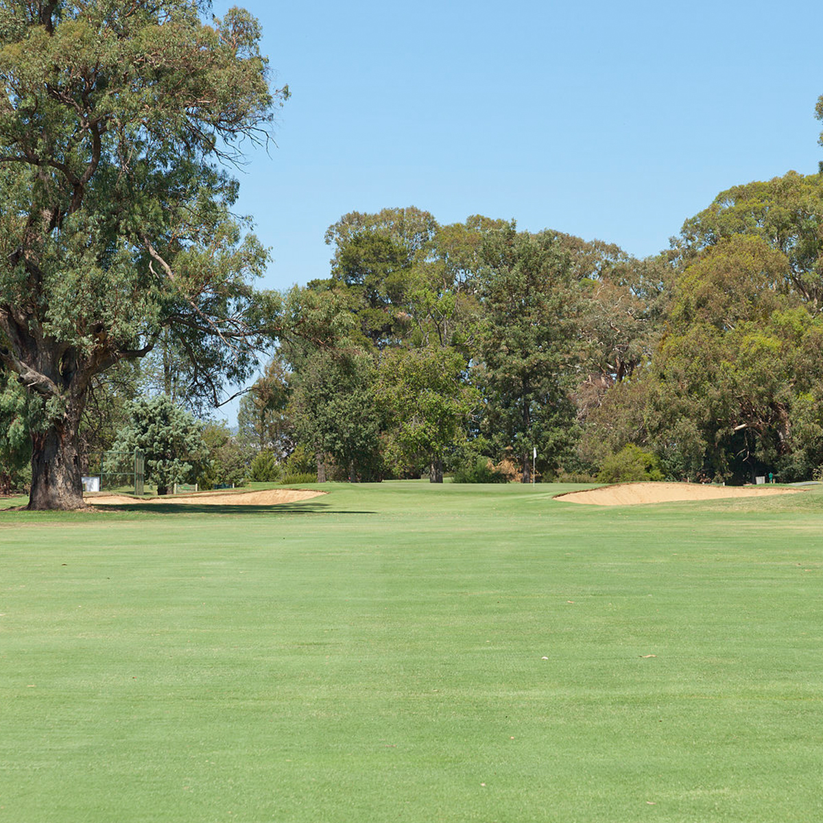 Scenery of the golf course at Howlong Golf Club