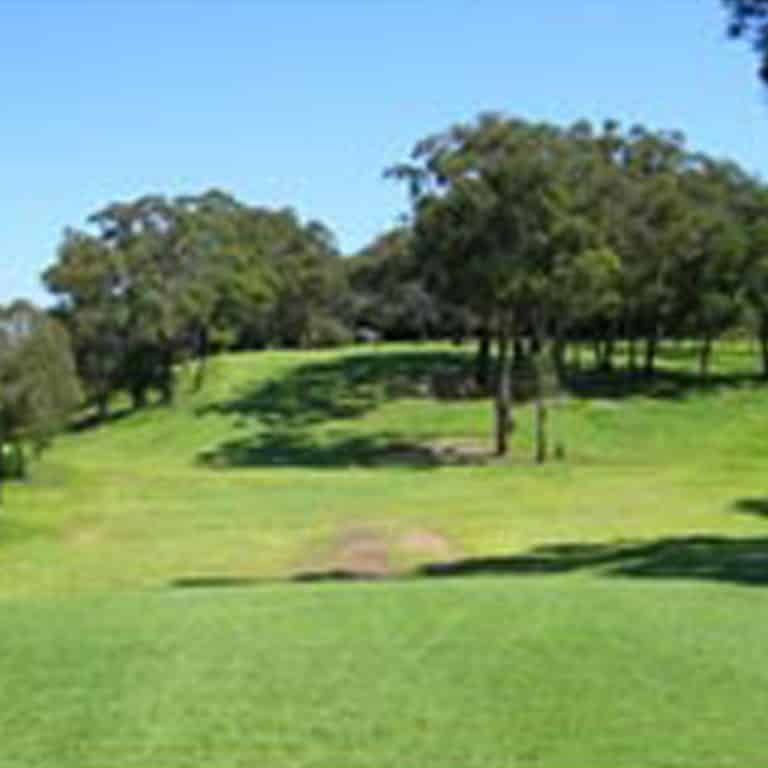 Images of the golf course at Hurstville Golf Club