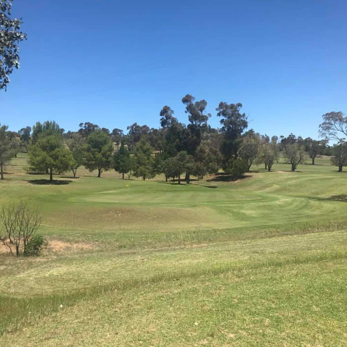 Images of the golf course at Junee Golf Club