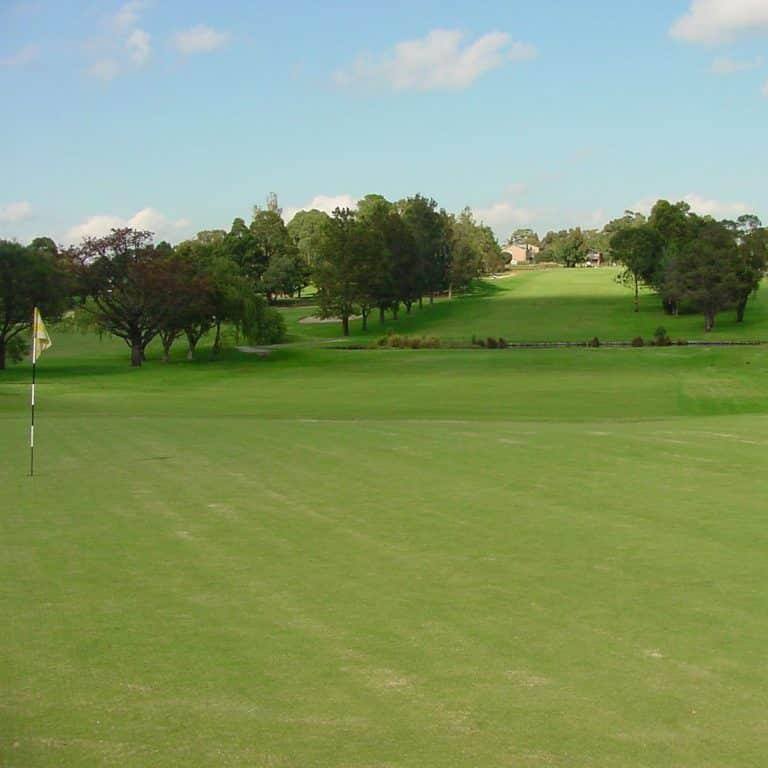 North Ryde Golf Club 2
