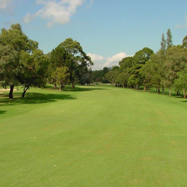 North Ryde Golf Club 5