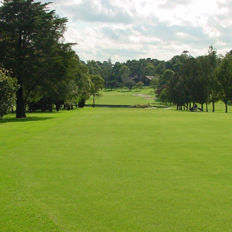 North Ryde Golf Club 8