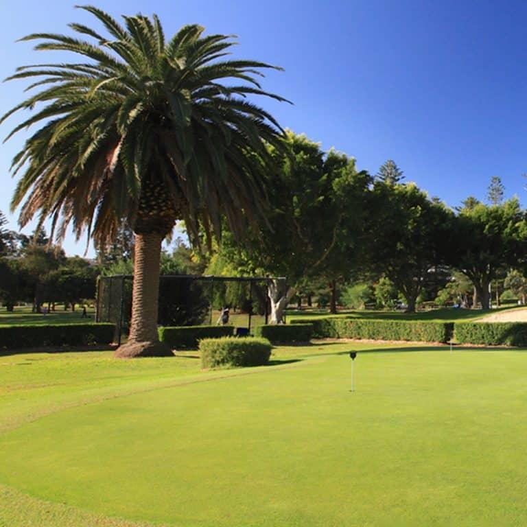 Palm Beach Golf Club 4