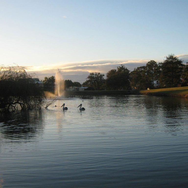 Wauchope-Country-Club-The-Dam-late-afternoon-1200x1200