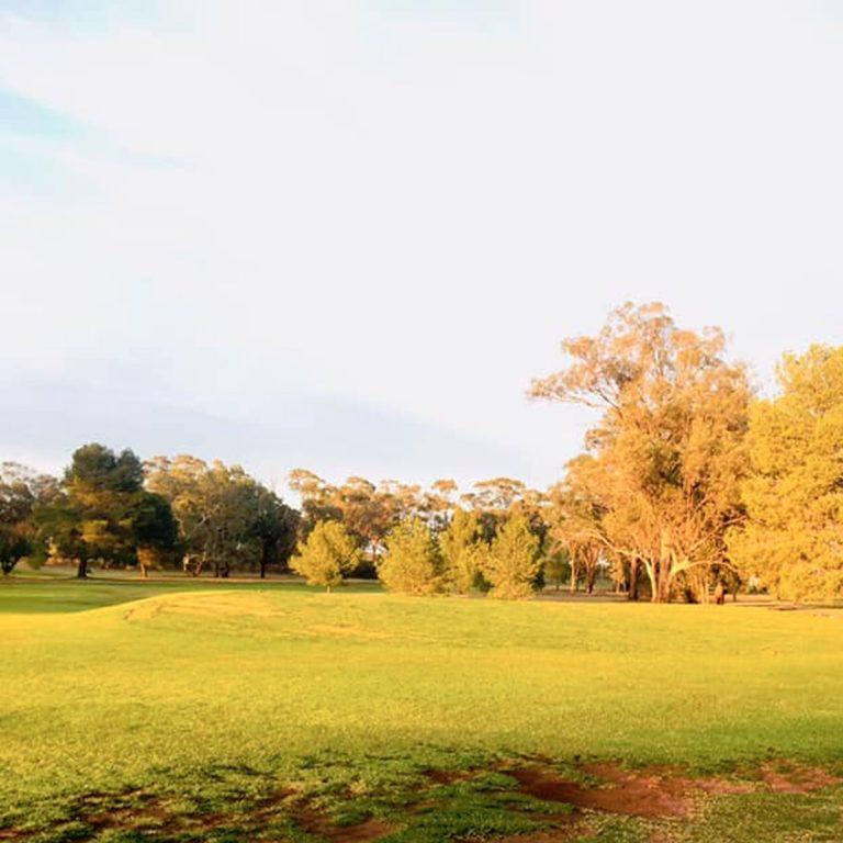 West Wyalong Golf Club6