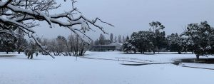 Goulburn Golf Club under snow