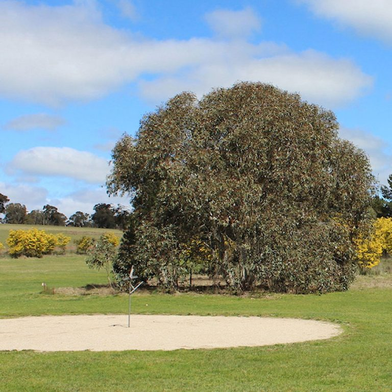 Taralga Golf Club