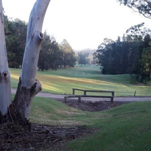 Image of the golf course at Kangaroo Valley Country Club