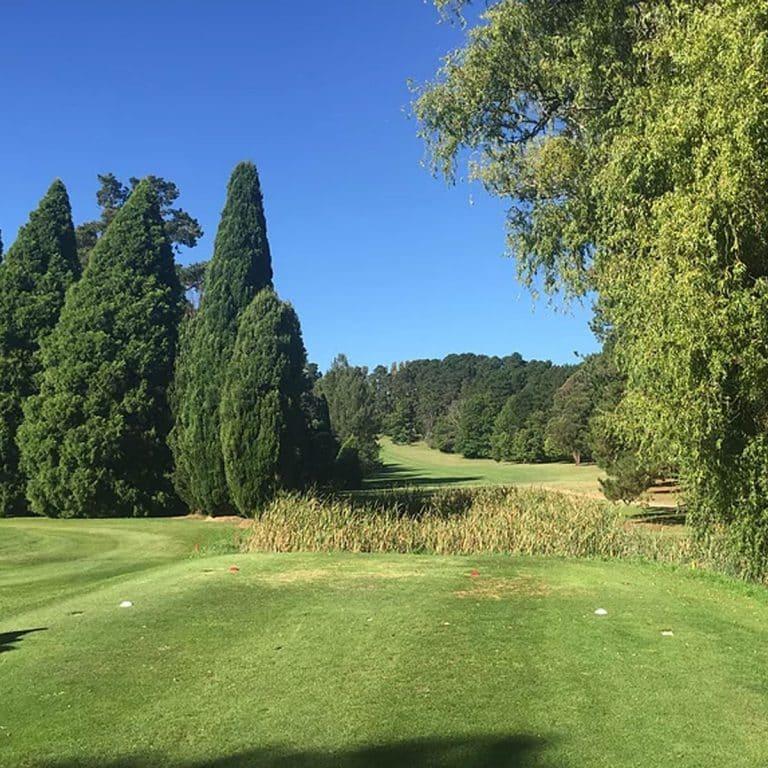 Moss Vale Golf Club 6