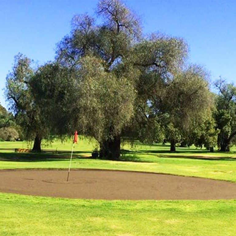 Narromine Golf Club sand green