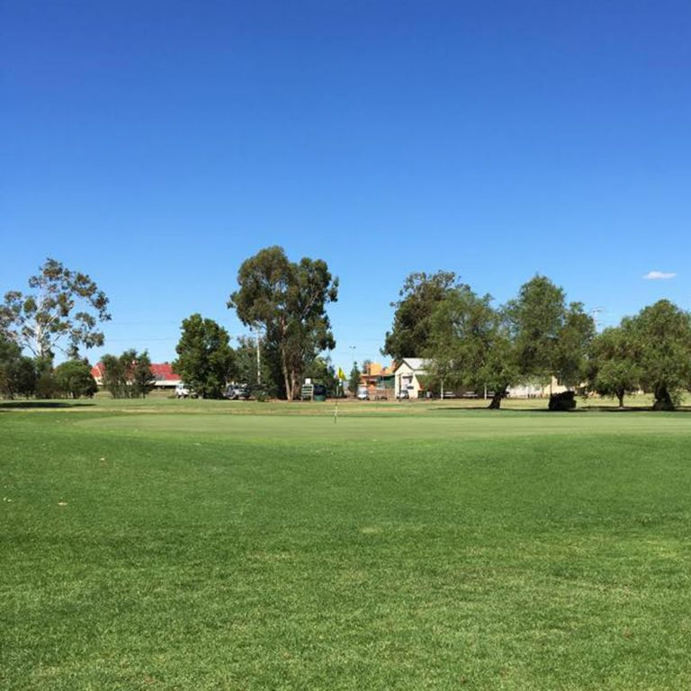 Scenery of the golf course at Leeton Golf Club