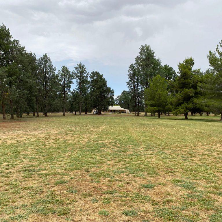 Lockhart Golf Club5
