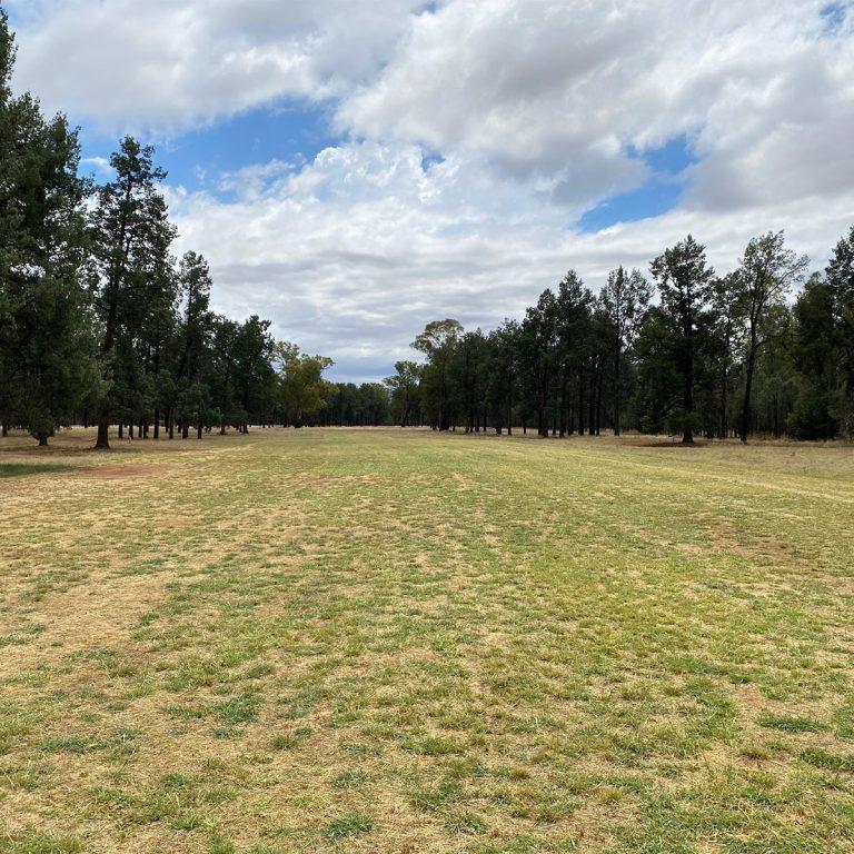 Lockhart Golf Club1