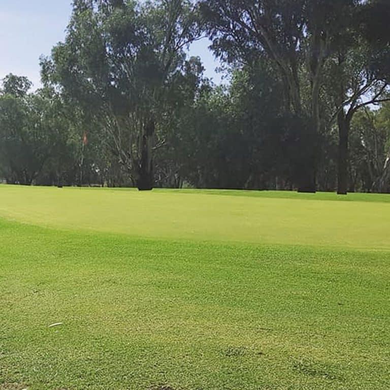 Narrabri Golf Club 4