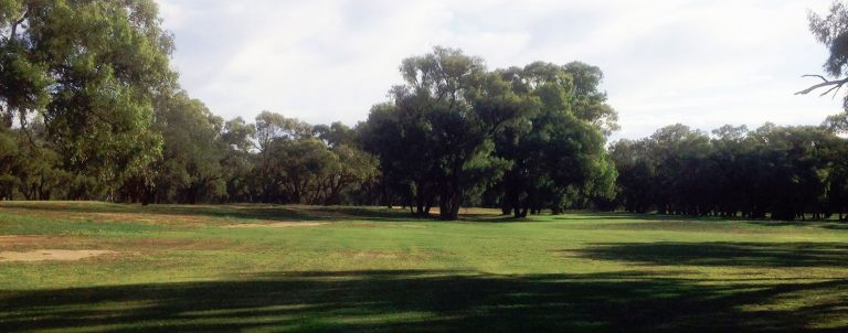 Nyngan Golf Club