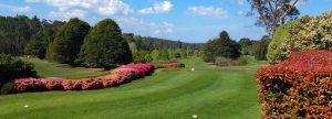 Blackheath Golf Club view