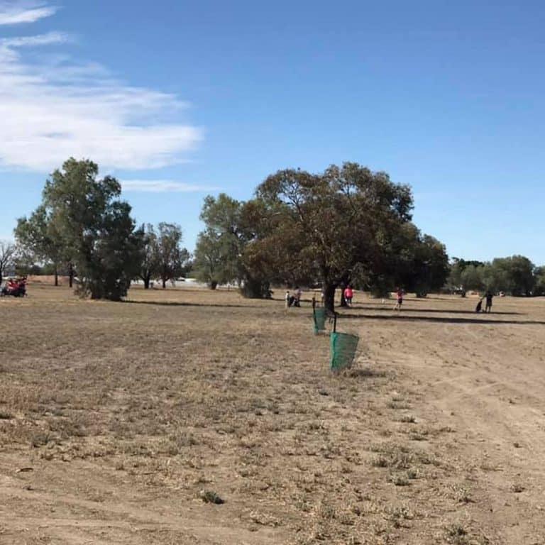 Darling River Golf Club 1