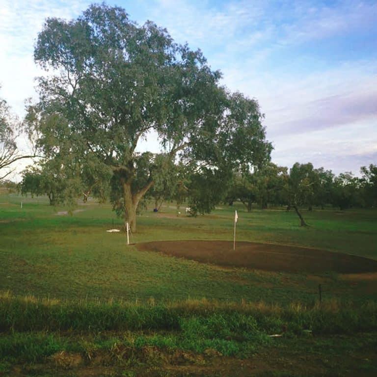 Darling River Golf Club 5